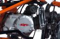 Quad Kayo Storm 150 2019