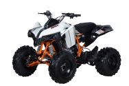 Quad Kayo TOR 250 2019