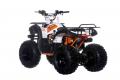 Quad Kayo AU 125 Utility 2019