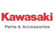 Ricambi originali kawasaki Quad Atv