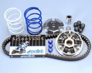 Kit Variatore Polini Honda Bali - Sport - Peugeot Looxor - Trekker