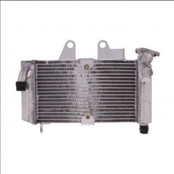 Radiatore Acqua Honda Xl 125