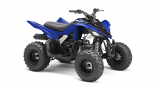 Mini Quad Yamaha YFM 90 R 2022