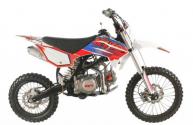 Pit Bike Kayo TT 125 2021
