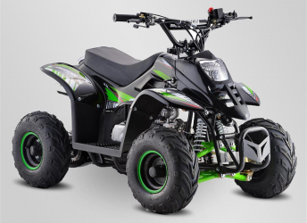Mini Quad 110cc 4T 2021